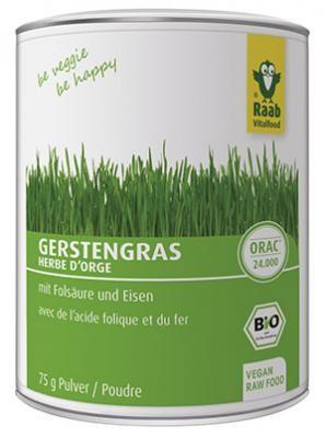 RAAB VITALFOOD GMBH Gerstengras Pulver Bio